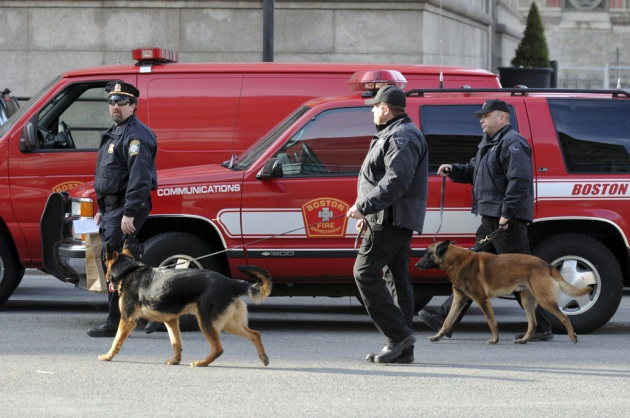 cani anti bomba uccisi