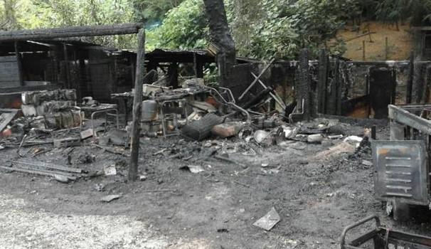 incendio uccide cinque cani