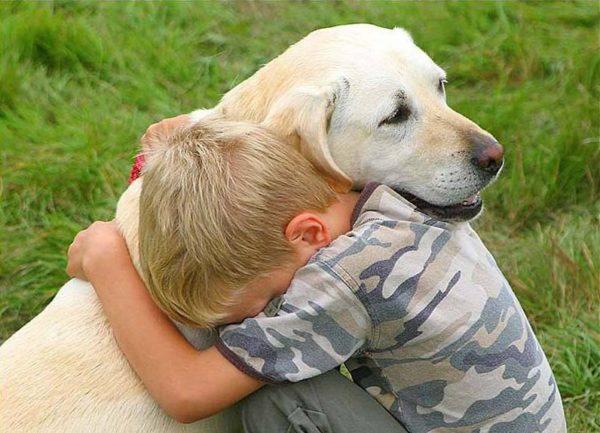 Cani Per Bambini Autistici Le Razze Più Adatte Razzedicani Net