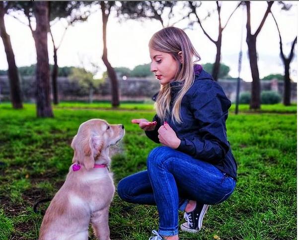 come prepararsi all'arrivo di un cucciolo di cane