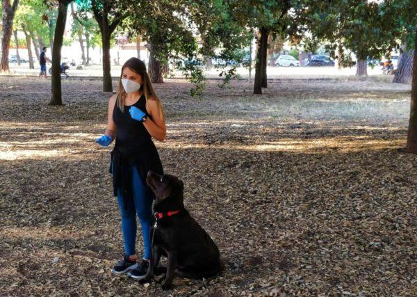 Come abituare il cucciolo al guinzaglio -3